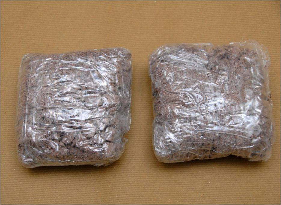 Heroin seized at Woodlands Checkpoint on 2 Jan 2014