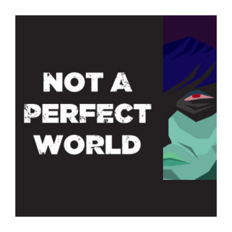 Not a Perfect World thumbnail