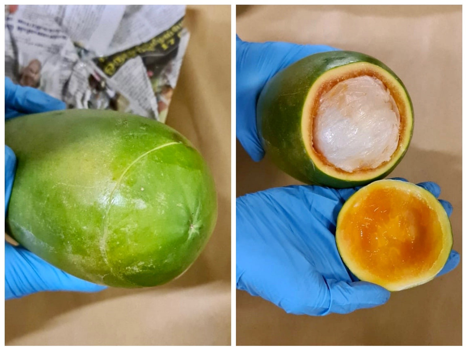 Photos 3 and 4: A papaya used to conceal 'Ice' and ketamine, seized from a vehicle in the vicinity of River Valley Road on 17 September 2020